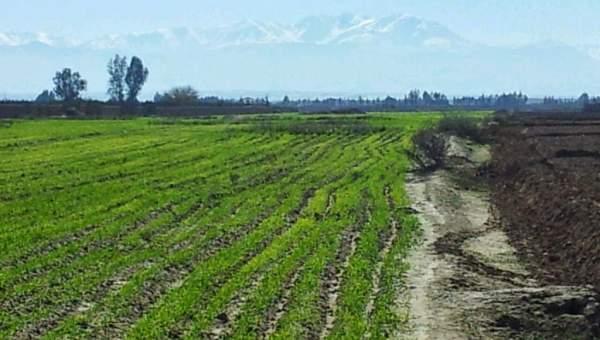 Terrain A Vendre 24 Km De Marrakech Route Agadir Immomaroc