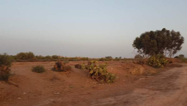 achat terrain Terrain villa Marrakech Extérieur Route Amizmiz