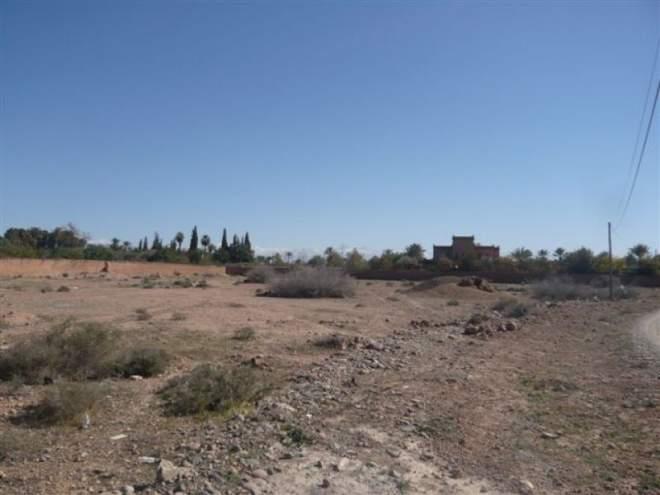 Terrain à vendre Marrakech Palmeraie