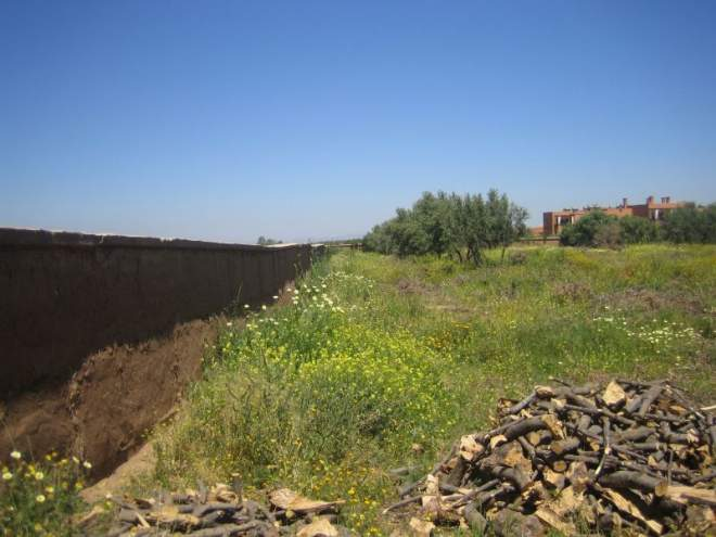 achat terrain Marrakech Extérieur Route Sidi Abdellah Ghiat