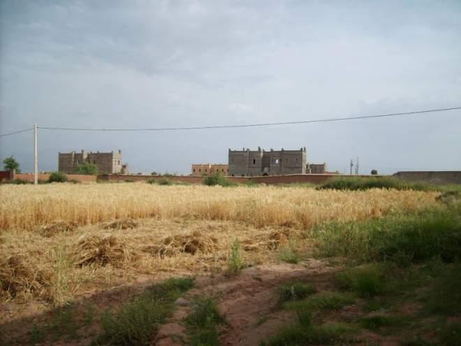 Vente terrain Marrakech Extérieur Route Ourika