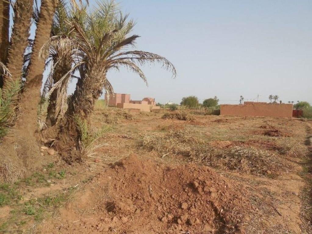 achat terrain Ferme Marrakech Extérieur Route Fes