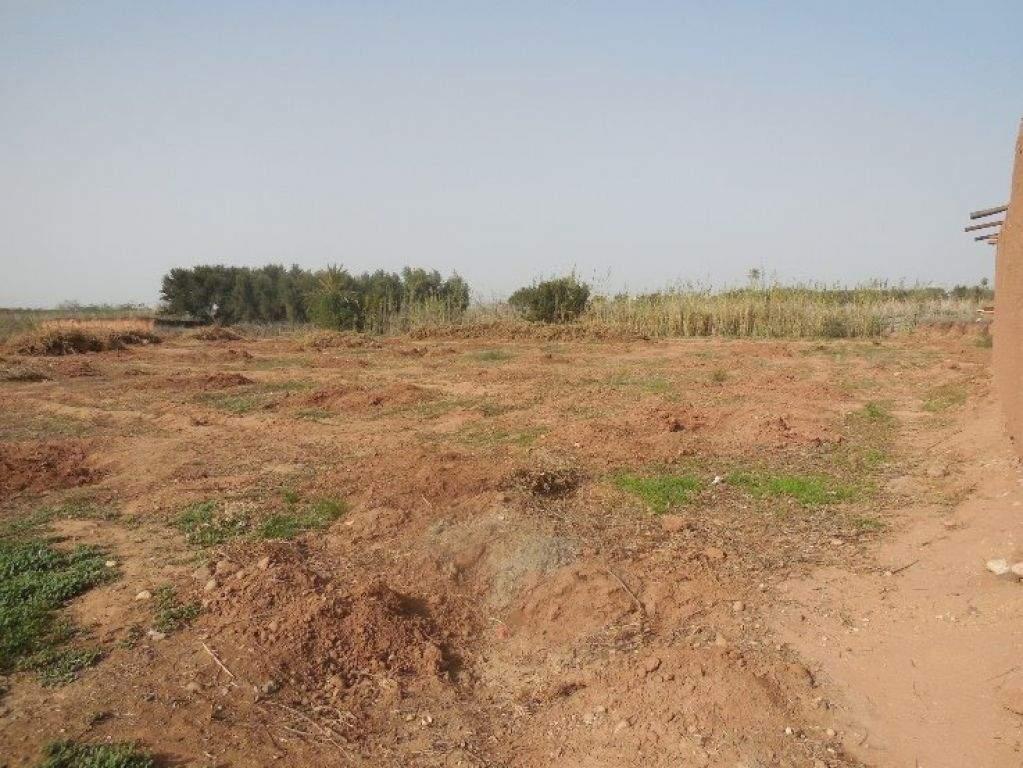 Vente terrain Ferme Marrakech Extérieur Route Fes