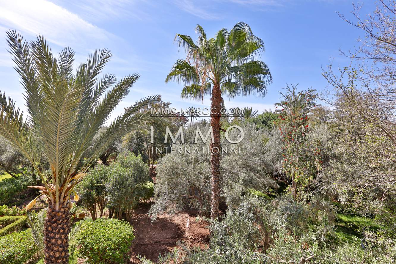Vente villa Marocain épuré agence immobiliere de luxe marrakech Marrakech Palmeraie
