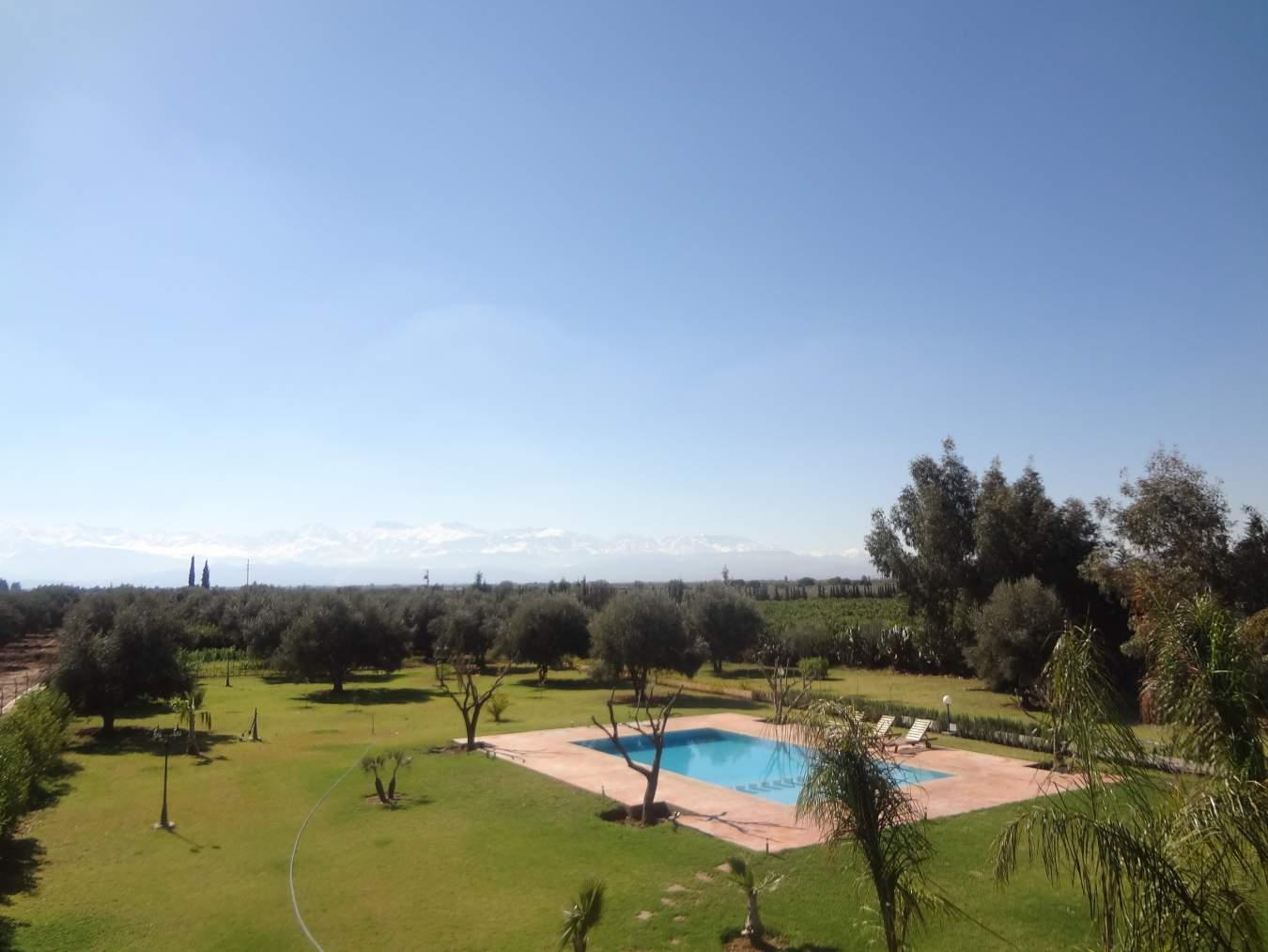 Achat villa Marocain épuré Marrakech Extérieur Route Sidi Abdellah Ghiat