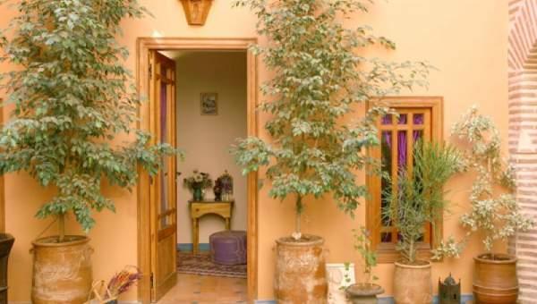 Vente riad maison d'hôtes Marrakech moins de 10 minutes de la place