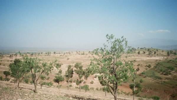achat terrain Ferme Marrakech Extérieur Autres Extérieur