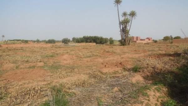 Terrain à vendre Ferme Marrakech Extérieur Route Fes