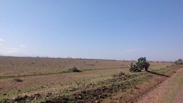 Vente terrain Ferme Marrakech Extérieur Route Ourika