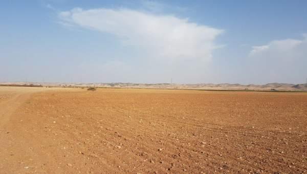 Terrain à vendre Terrain a lotir Marrakech Extérieur Autres Extérieur