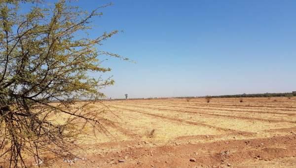 Terrain à vendre Terrain a lotir Marrakech Extérieur Route Ourika