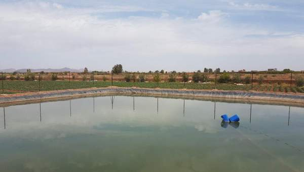 Vente terrain Ferme Marrakech Extérieur Route Ouarzazate