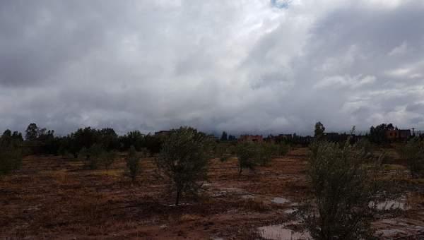 Terrain à vendre Terrain villa Marrakech Extérieur Route Ouarzazate