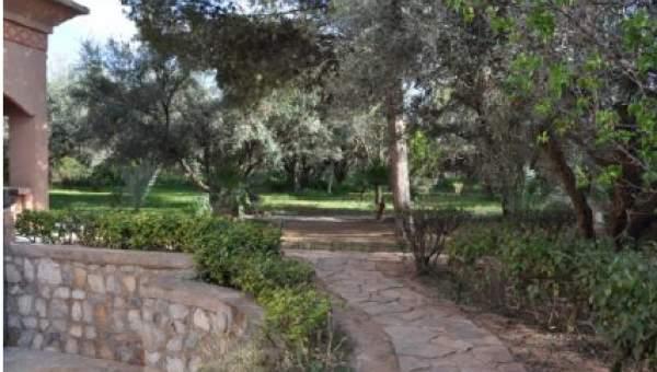 acheter maison Marocain épuré luxe Marrakech Palmeraie