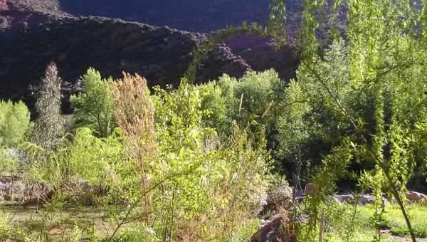 Terrain à vendre Terrain villa Marrakech Extérieur Route Ourika