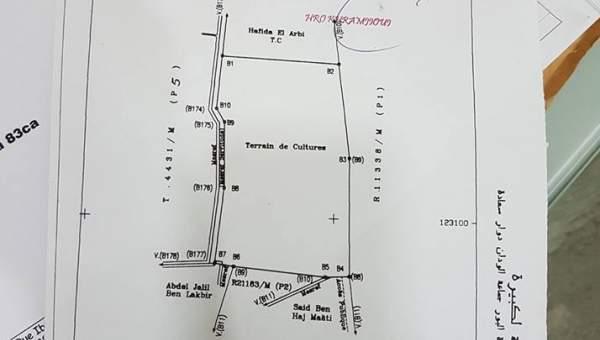 Terrain à vendre Terrain villa Marrakech Palmeraie Bab Atlas