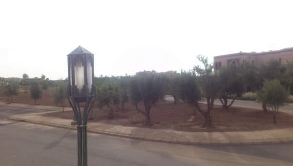 achat terrain Terrain villa Marrakech Centre ville Autres Centre ville