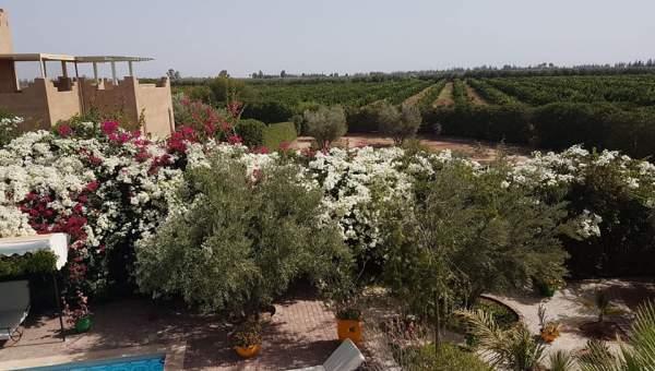 Maison à vendre Marocain épuré Marrakech Extérieur Autres Extérieur