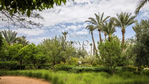 acheter maison Marocain luxe Marrakech Palmeraie Circuit Palmeraie