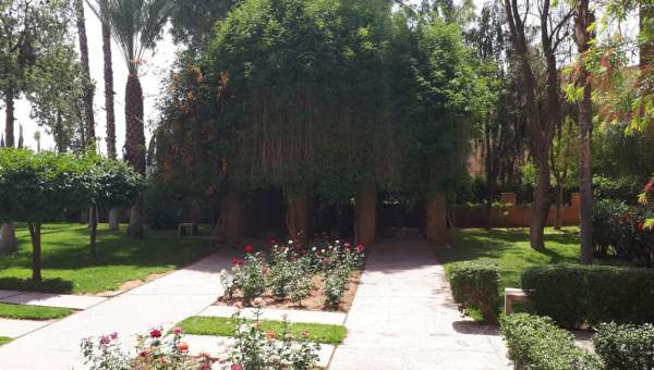 acheter appartement Marocain épuré Marrakech Hivernage Centre ville