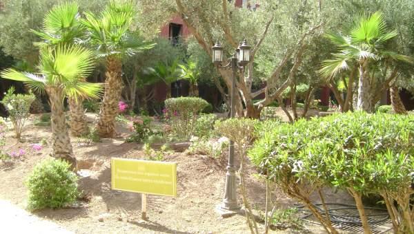 Appartement à vendre Marocain épuré Marrakech Extérieur Autres Extérieur