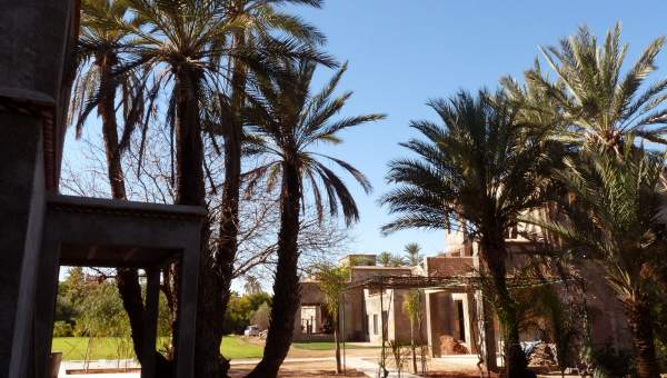 villa achat Marocain épuré luxe Marrakech Palmeraie Circuit Palmeraie