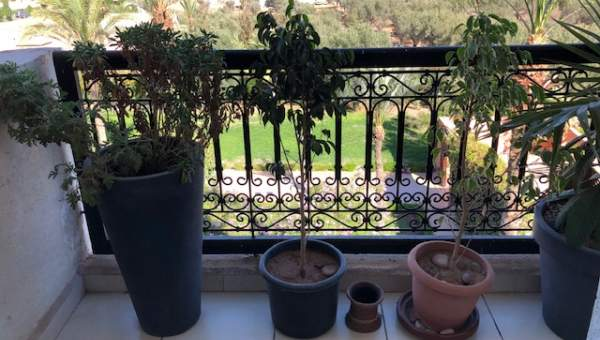 Achat appartement Marocain épuré Marrakech Centre ville Route Casablanca