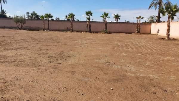 Terrain à vendre Terrain villa Marrakech Palmeraie