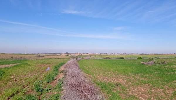 Vente terrain Terrain a lotir Marrakech Golfs Al Maaden