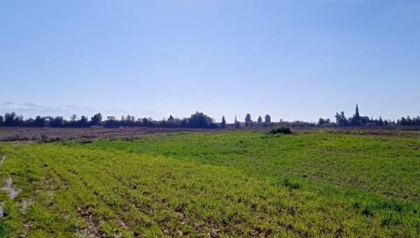 Terrain à vendre Terrain a lotir Marrakech Golfs Al Maaden