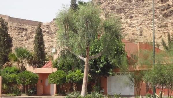 achat terrain Terrain villa Marrakech Centre ville Lycée français - Camp El Ghoul