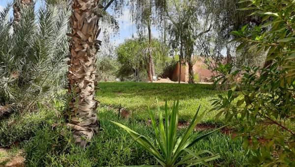 Appartement à vendre Marocain Marrakech Golfs Autres golfs Palmeraie Circuit Palmeraie