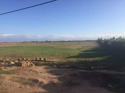 achat terrain Terrain a lotir Marrakech Extérieur Ecole américaine