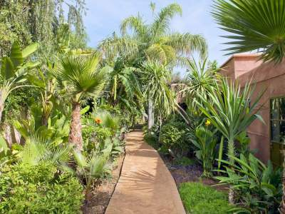 Location maison Marocain épuré Marrakech Golfs Amelkis