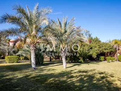 Villa à vendre Marocain haut de gamme Maison d'hôtes Marrakech Palmeraie