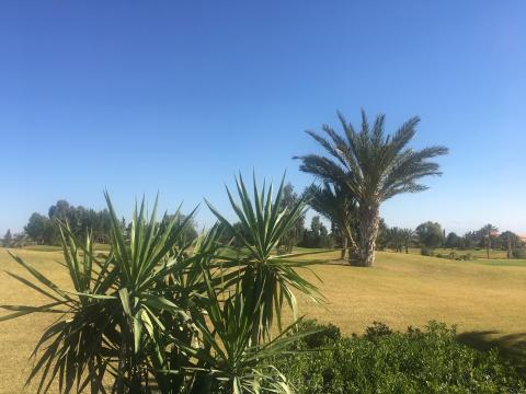 Terrain à vendre Terrain villa Marrakech Golfs Autres golfs